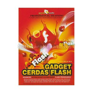 gadget cerdas flash